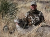 Pickering-Dink-Coues-in-Mexico