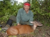 Hardest_animal_to_hunt_in_North_America_the_Red_Brocket_deer.