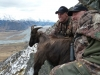 spook-and-i-tahr