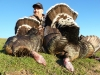 Bill Farley, Gobblers in New Zealand.