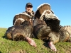 Bill Farley with 3 Gobblers for a World World Slam.