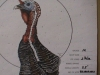 World-Slam-Turkey-Load-Target-60-yards
